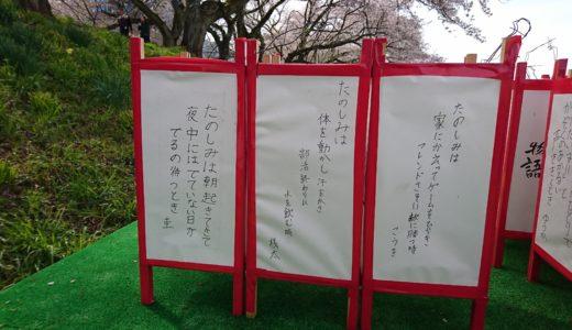 福井市明倫中学校のみなさんが作ってくれたぼんぼり